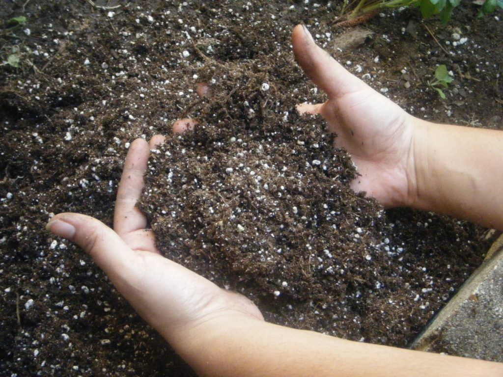 Удобрение почвы и растений при помощи хлористого калия