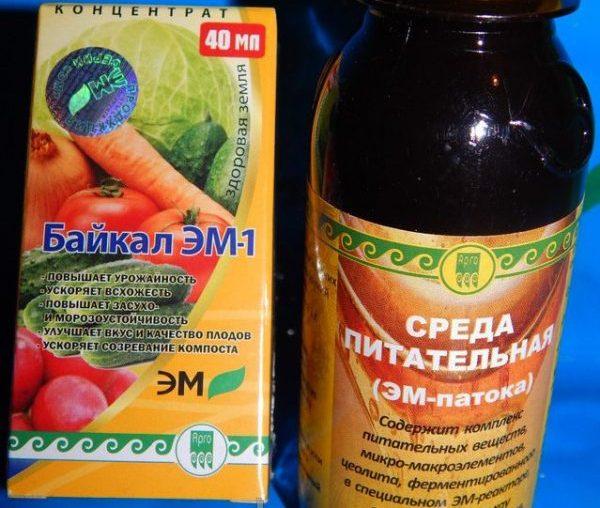 В удобрении используются наиболее эффективные штамы бактерий