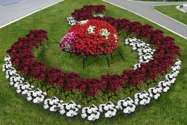 Лучше садить цветы, которые не нуждаются в частом поливе