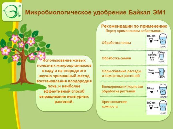 Рекомендации по использованию средства Байкал для подкормки растений