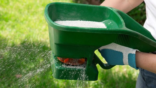 Для удобрения почвы селитрой можно использовать специальный распылитель