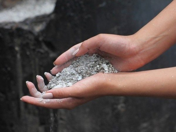 Пепел отлично влияет на почву