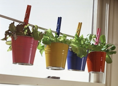 Можно достаточно оригинально оформить домашний сад