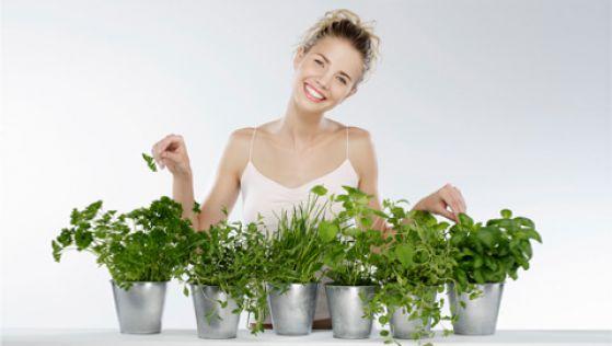 Можно сажать дома зелень вместо декоративных растений