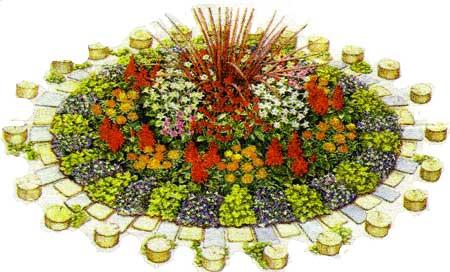 Схема посева растений для украшения участка