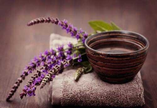 На основе данного растения часто делают настойки и масла