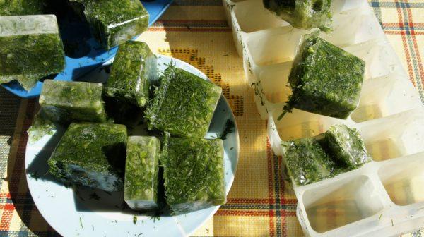Как выглядит готовая, замороженная в формочки, зелень