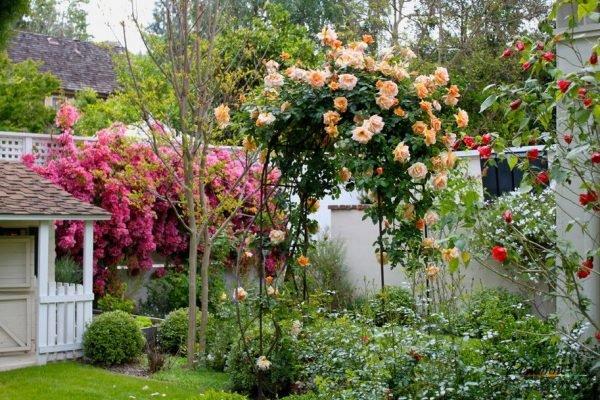 Даже украсив небольшой элемент розами можно создать уникальный образ ландшафтного дизайна
