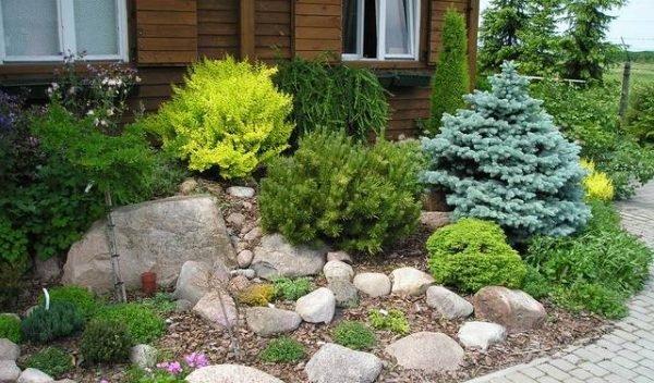 Украсив цветник каменным бордюром или другими каменными элементами, можно получить гармоничный общий образ