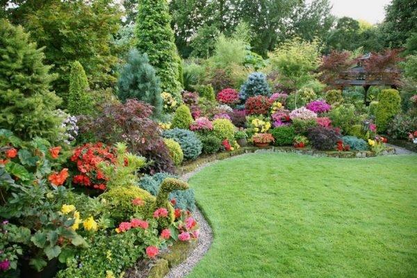 В миксбордерах обязательно должны присутствовать различные травы