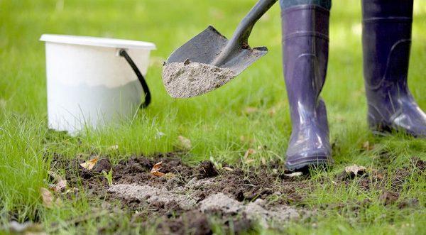 Удобрять почву фекалиями можно как до посадки растения, так и после