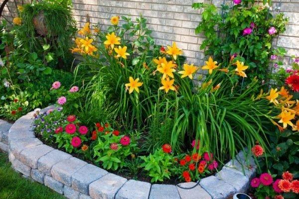 Даже из самых простых декоративных цветов можно сделать красивый цветник, как на фото