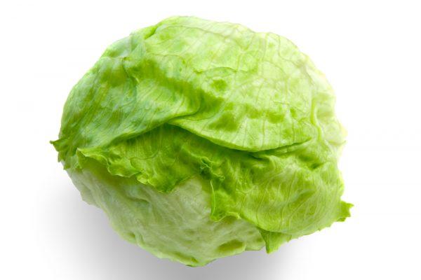 На первый взгляд, салат Айсберг похож на головку капусту