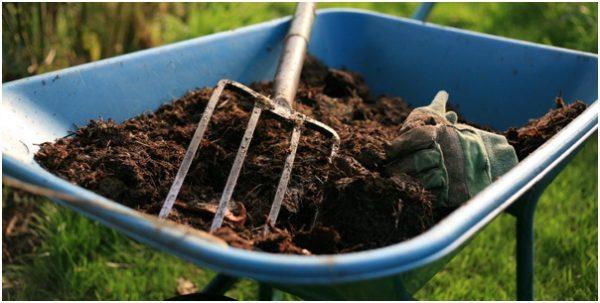 Перегной для удобрения почвы