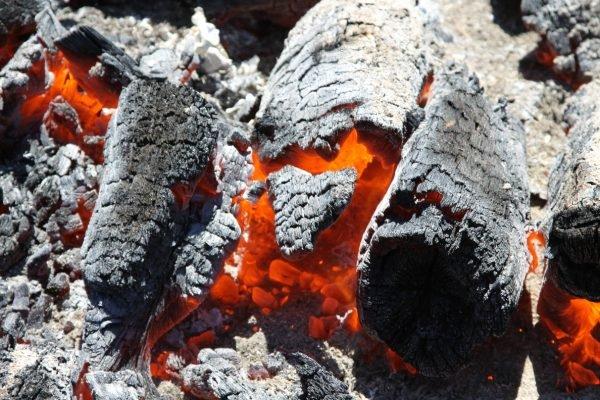 Пепел является полезным веществом для почвы