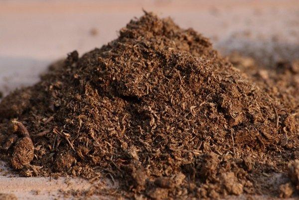 Органические удобрения для дыни