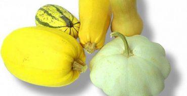 Кабачки и цуккини являются двумя разными сортами одного семейства