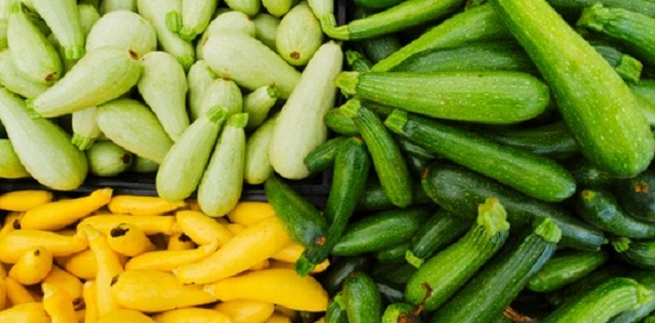 Не стоит путать пожелтевший плод с желтым сортом кабачков