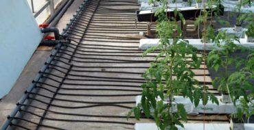 Трубы уложены под грядки для обогрева грунта