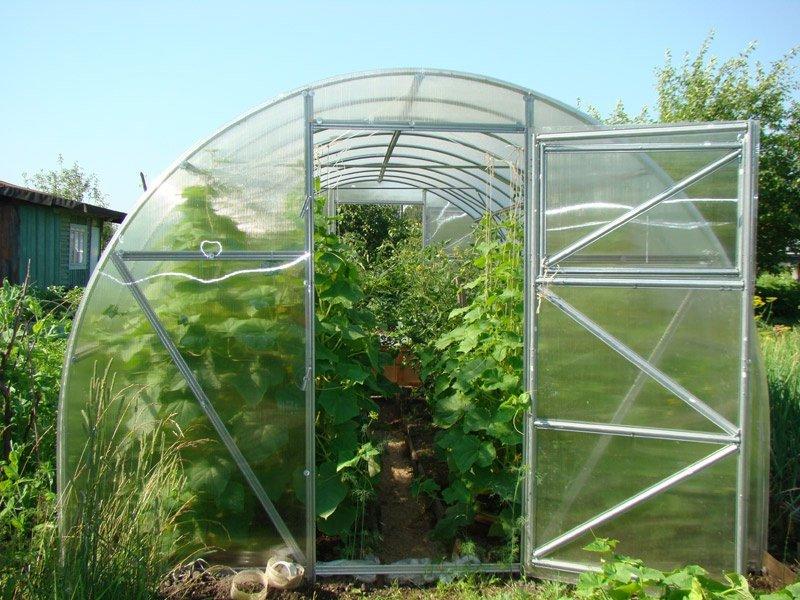 """Выращивание овощей в теплице """"Урожай"""""""
