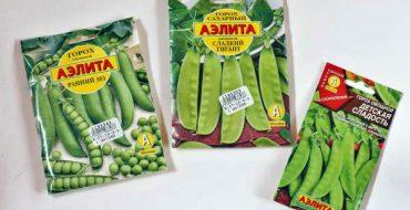 Богатый выбор селекционного овощного гороха