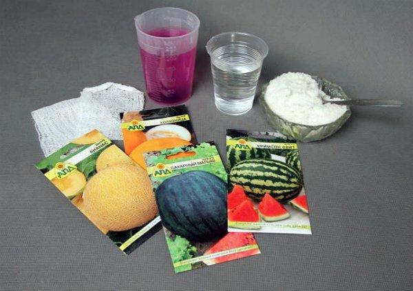 Дезинфекция семян перед посадкой как мера профилактики