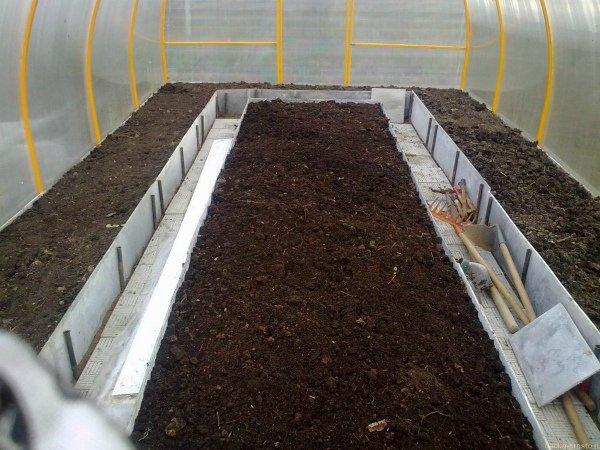Подготовка почвы в теплице под дыню весной