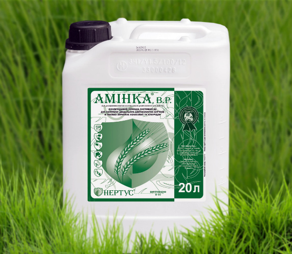 Аминка – послевсходовый гербицид системного действия