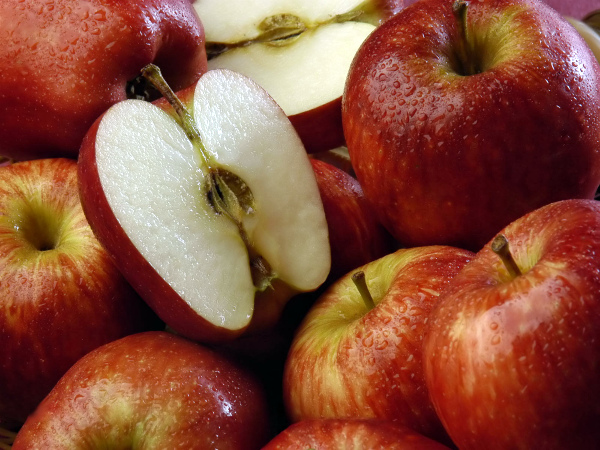 Яблоня Джонатан характеристика и фото. Хранение и транспортировка яблок