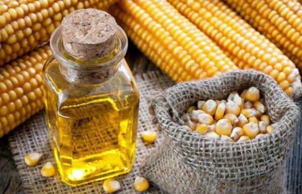 Кукурузные початки, зерна и масло