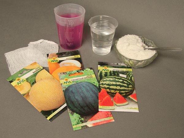 Обеззараживание и подготовка купленных семян