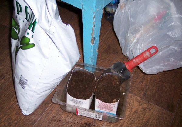 Подготовка грунта для посева дынных семян