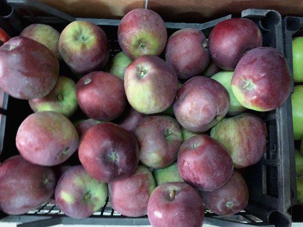 Яблоки Имант собраны ящик для хранения