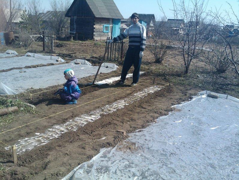 Внесение удобрений на грядку весной