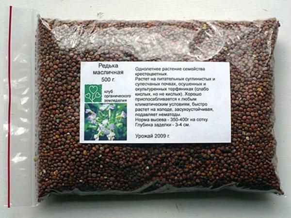 Приобретение семян редьки для посева