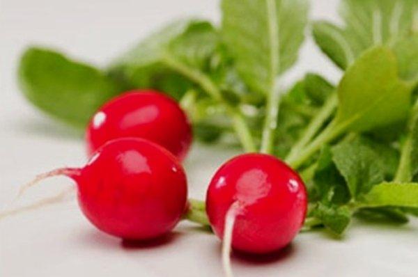Ярко-красные корнеплоды сорта Сакса