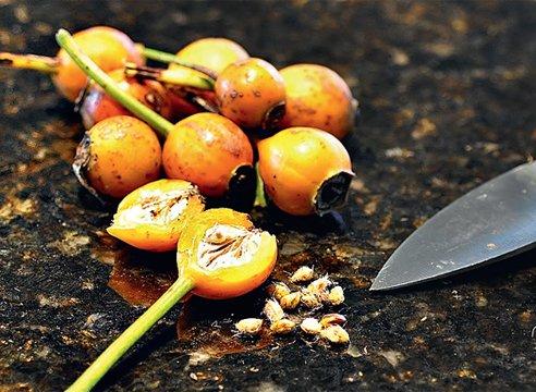 Извлечение семян из плодов