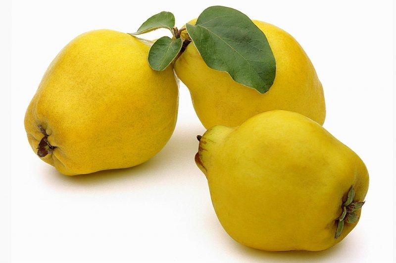 Фото плодов грушевидной айвы