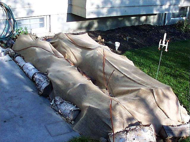 Прямоугольное накрытие для кустов на зиму