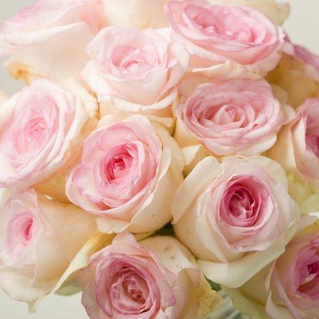 Букет, собранный из роз Дольче Вита