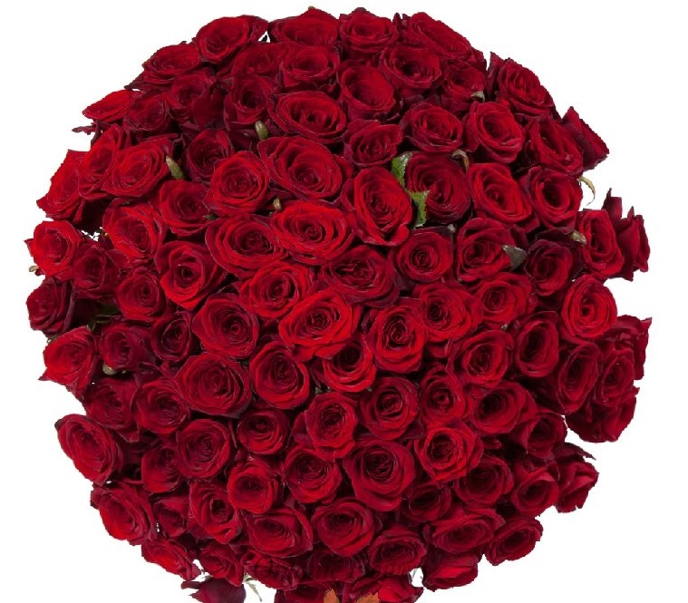 Сорт Гран-при - букет из 101 розы