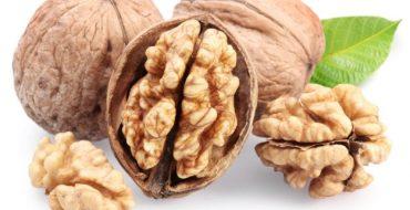 Внешний вид грецкого ореха