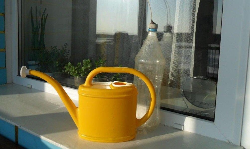 Лейка для полива растений