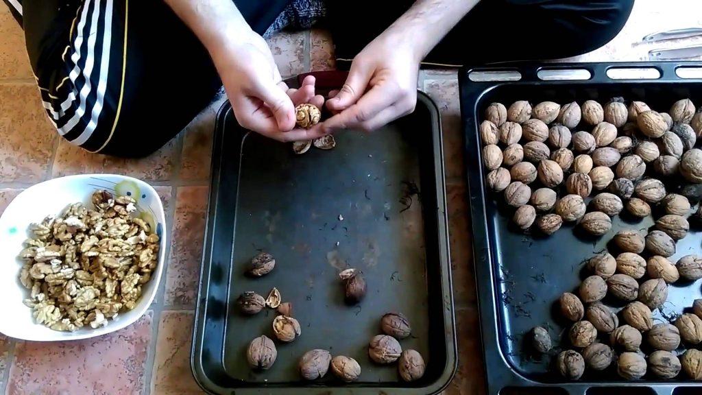 Сушка грецких орехов в духовке