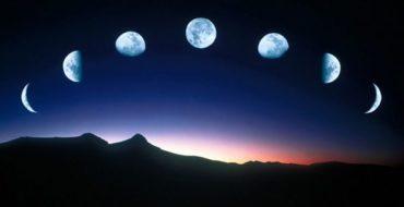 Лунный посевной календарь садовода