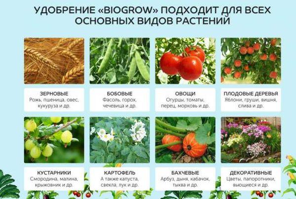 Для каких растений подходит Biogrow