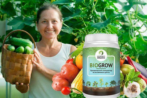 Biogrow – удобно использовать в качестве подкормок