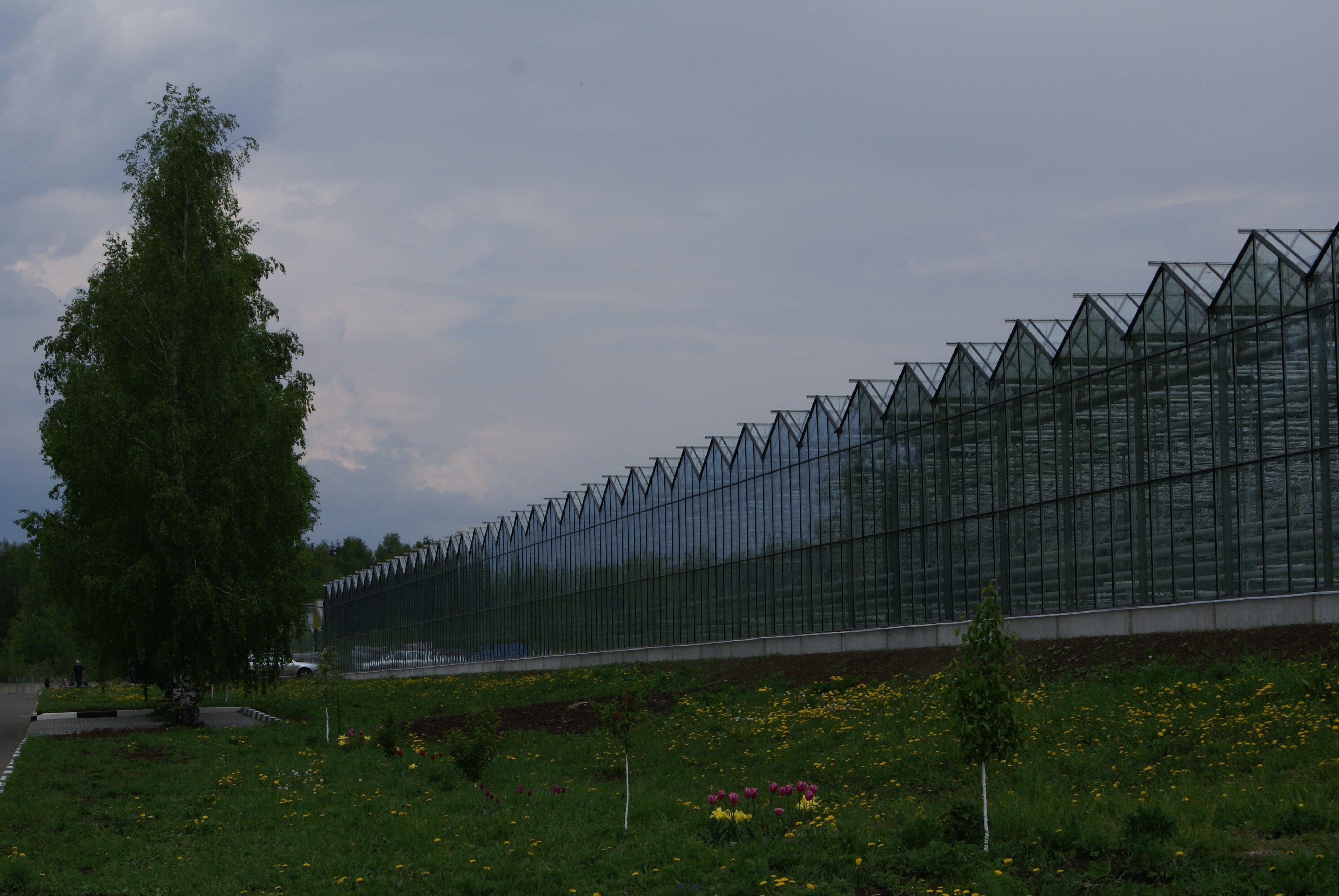 Теплицы в Московской области