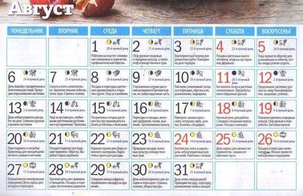Лунный календарь на август 2019 года: благоприятные дни