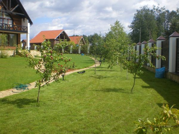 Планировка сада - ответственное задание